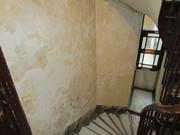 Traitement des anciennes peintures au plomb Paris, Ledolica