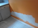 Peintre dégât des eaux 75007.